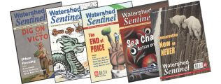 five covers of the Watershed Sentinel