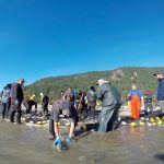 Community practicing terminal fishery on the Fraser River