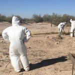 Searchers look for human remains in desert