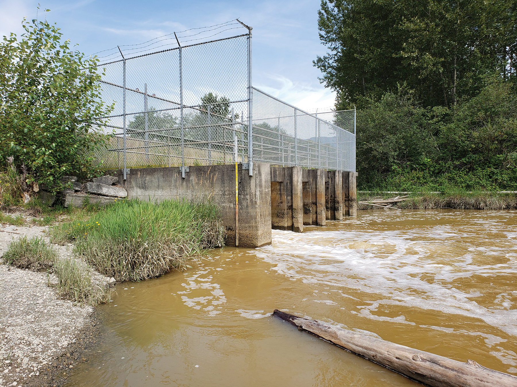 Pump station – Water flows out of a side-channel into the Pitt River after pumps are turned on | author photo