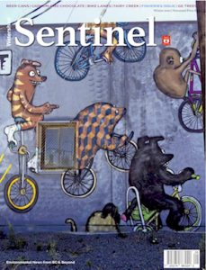 Watershed Sentinel Dec2020-Jan2021 Cover