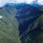 Fairy Creek Valley