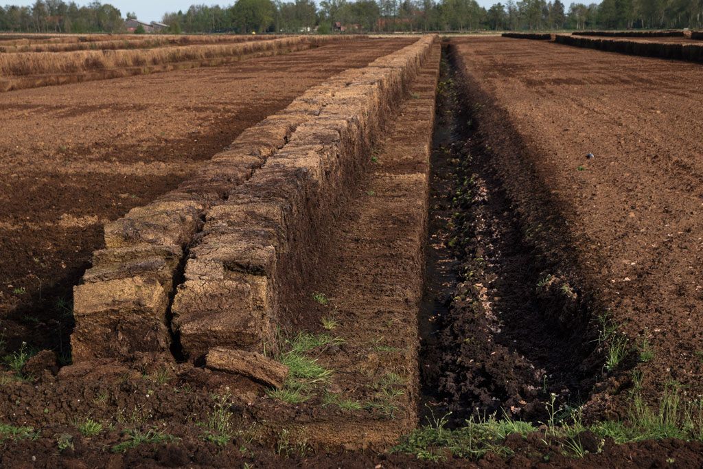 Industrial peat extraction